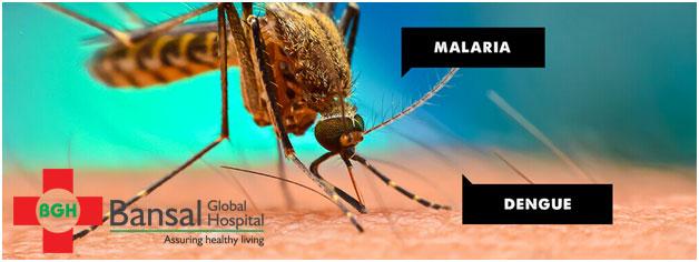 Malariya